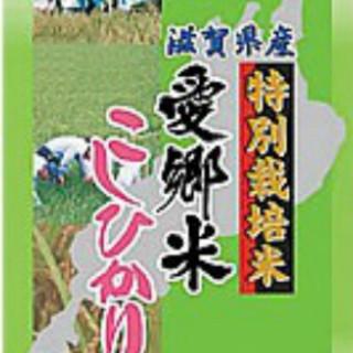 特別栽培米愛郷米こしひかりを使用