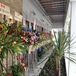 キッチン千賀 - キッチン千賀(蒲郡市)2014/06/12オープン。食彩賓館撮影