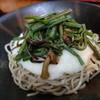 伝兵衛 - 料理写真:山菜とろろ(冷)