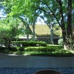 カフェ すいれん - 中から見た中庭の風景