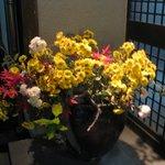 みかみ - 生花です!