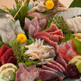産地直送の鮮魚の数々!