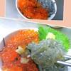 元気屋 - 料理写真:朝獲れ生シラスと極上イクラのハーフ丼!人気急上昇中