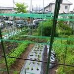 28394509 - 窓の外には自家菜園が