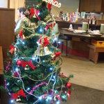 2842452 - 店内のクリスマスツリーです。