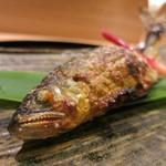 日本料理 太月 - 26年6月 郡上八幡鮎塩焼き(焼きグレードアップ)