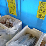 丸吾水産 - 太平洋の鮭、やっぱりブリっと大きいですね!