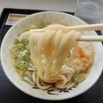 徳光パーキングエリア(上り線)フードコート - 2014年6月22日(日) 天ぷらうどん(ネギ多め)410円 丸っこい茹で麺