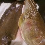 イルチッチォーネ - これから熟成させる魚