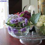 28539443 - 色とりどりの紫陽花が飾られ季節感のある店内