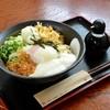 Teuchiudonkanou - 料理写真:元気玉♪