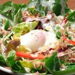 コンセント - サラダ菜と温泉玉子のシーザーサラダ