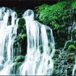鮨旬美西川 - こだわりの水は岐阜県にある「二条関白蘇生の泉」より…月に一度必ず自ら汲みに走ります。料理、水割り飲料水に使用します。