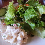 Risotto Cafe 東京基地 - セットのサラダ