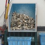 かき小屋 - 小屋の前に積まれた牡蠣達
