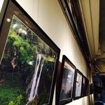 アートフォーソート - 写真や絵画などの個展が定期的に開かれます