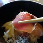 しちせ - 赤鯖