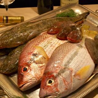 瀬戸内海から届く鮮魚