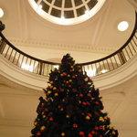 綱町三井倶楽部 - クリスマスツリー