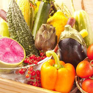 【新鮮野菜】お肉はもちろんのこと、野菜にもこだわりました!