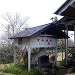 葡萄の木 - 薪焼きピザ釜です