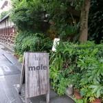 MOLE -