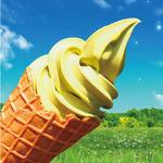 マキバ - 2種類の宇治抹茶をブレンドして、香りと風味を追及。 外国からの観光客の方にも大人気の抹茶ソフトクリーム!!