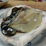 28741945 - 隠岐の岩牡蛎