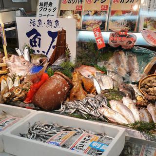 朝獲れ鮮魚を目で見て注文!!