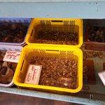 平野鮮魚 - 水槽①