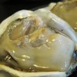 28767553 - 真ん中の牡蠣アップ