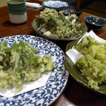 28788554 - 山菜の天ぷら