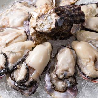 新鮮な生牡蠣毎日入荷中!