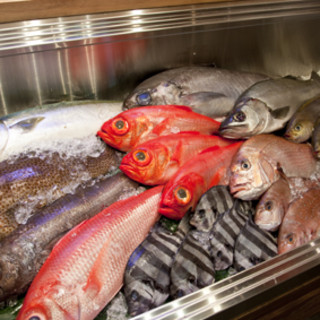 毎日産直鮮魚をご提供!