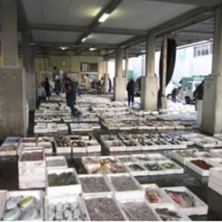 【手作りと旬】宇和島漁港直送の魚