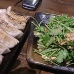 肉汁餃子製作所ダンダダン酒場 - 餃子よりパクチーサラダがおすすめ!
