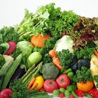 国産の新鮮野菜を使用!