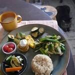 Cafe Yooi - 料理写真:ランランランチ