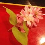 野の花 -