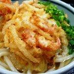 森製麺所 - 料理写真:かけうどん・小エビのかき揚げ