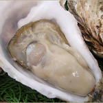 かきべえ - 兵庫県産の生牡蠣