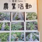soushokukurabuikesuryourihitomi - 農園