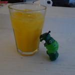 ハイドゥン - オレンジ酒な何か