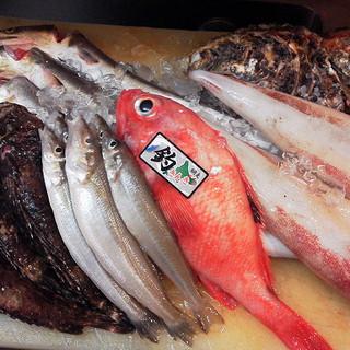 美味しい旬のお魚、お野菜をご堪能いただけます。