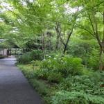 アサヒビール 大山崎山荘 - 大山崎山荘美術館までの散歩道