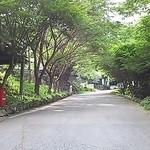 どんぶり屋 - この上り坂、久保田一竹美術館前を過ぎたら5分というけれど・・・