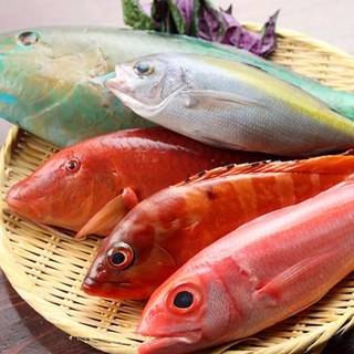 沖縄から直送!鮮魚と島野菜