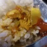 ネパール家庭料理 麦 - チキンカリーかけました