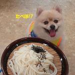 庵古堂 - 料理写真:夏休みは、食べホ♪