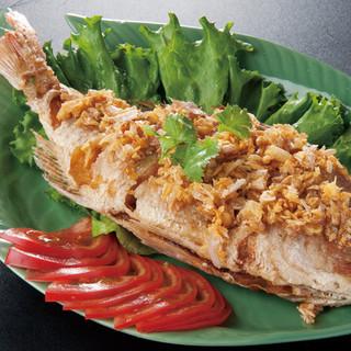 日本国からタイ国に寄贈した国民的食用魚ティラピア
